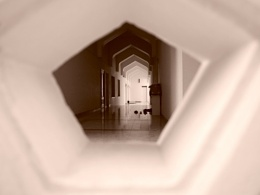 Peering into the mosque