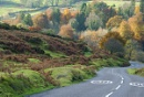Dartmoor in the Autumn