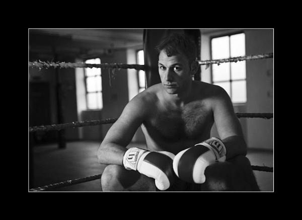 Boxer by chrispo