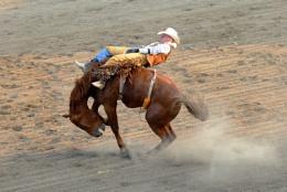 Ride 'im cowboy!