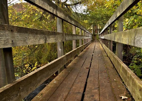 Wood Bridge by waineswitch