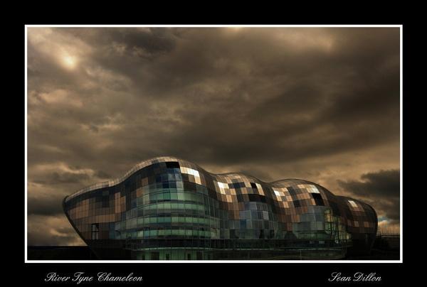 River Tyne Chameleon by Sean_Dillon