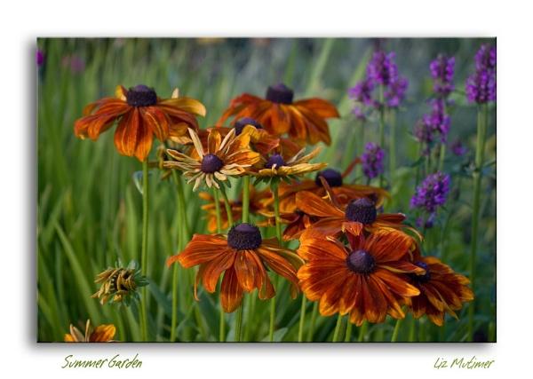 Summer Garden by LizMutimer