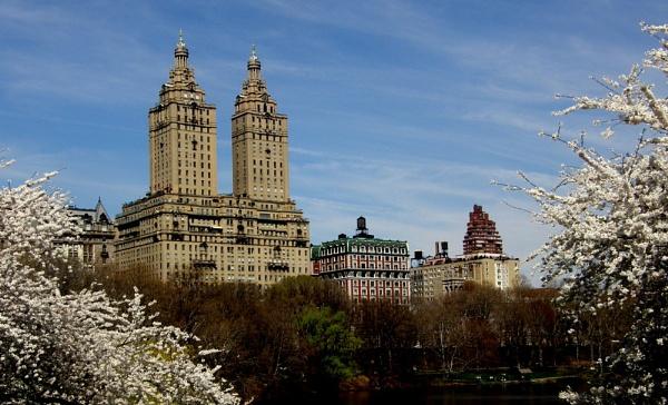 Central Park NY by MandyS