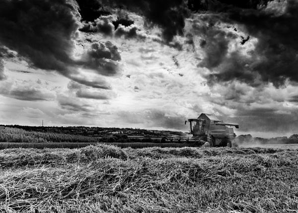 Harvest by Alan_Baseley