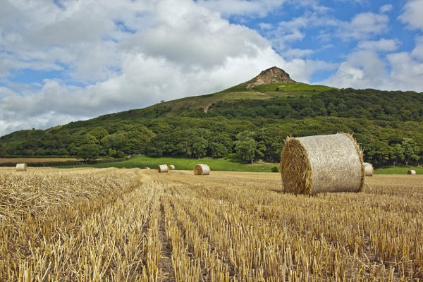Hay bales under Roseberry by AR_Photography