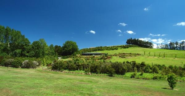 NZ Homestead by chensuriashi