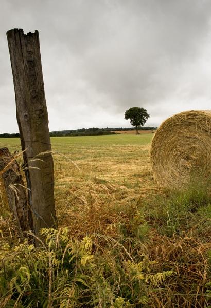 Fieldscape by paulb20