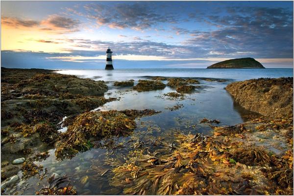 Sun, Sand & Seaweed by MarkBroughton