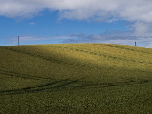 Poles Apart by Munro
