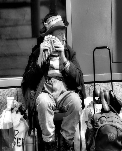 Music Man by joelgalleries