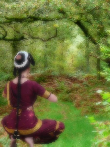 Dreamy Woodland by Ian55