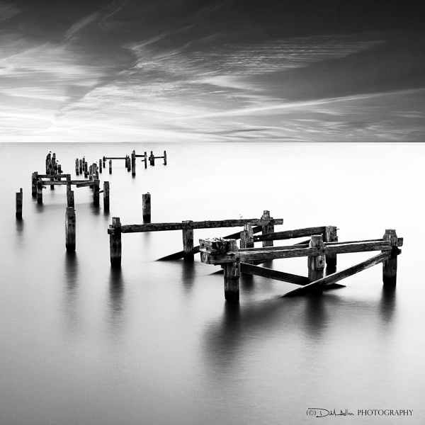 The Pier by responce