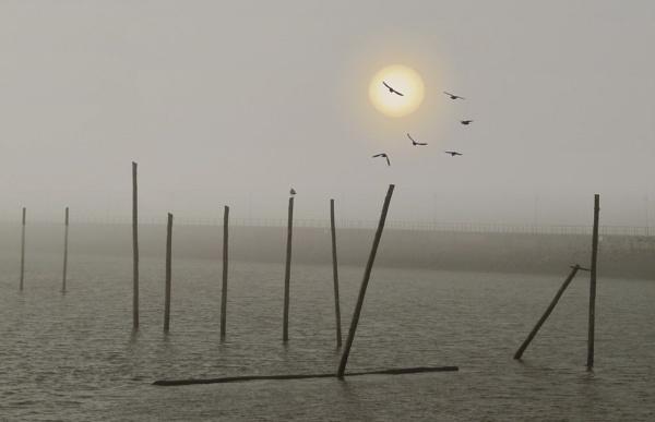 Misty dawn by rbai2007