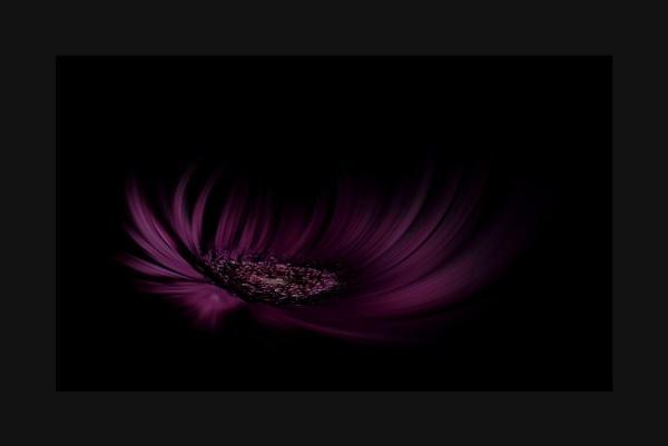 Purple Haze by beckybookins
