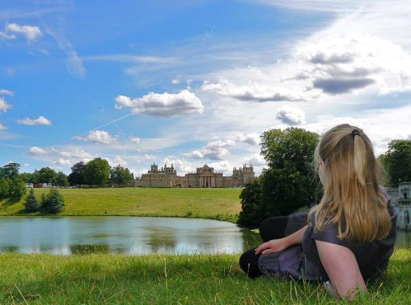 Blenheim View by stychy