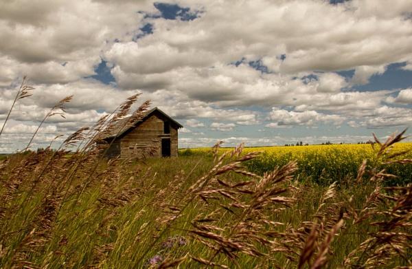 rural treasures by inntrykk