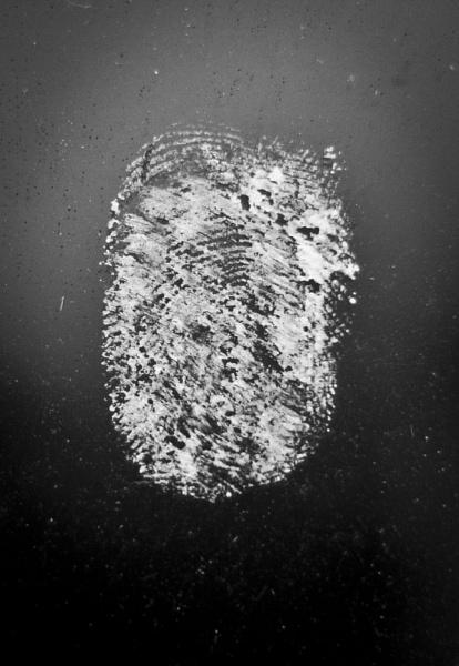 identity by prosapia