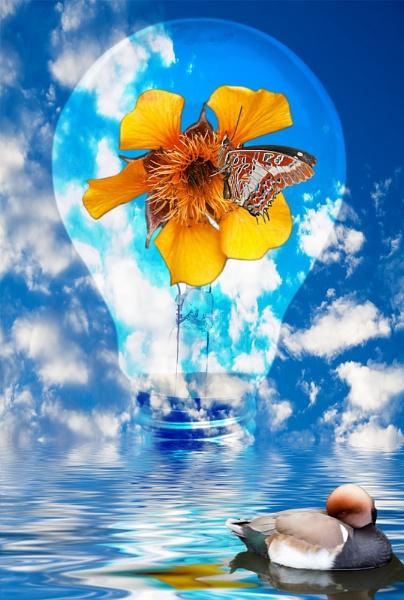 Flowering Bulb by Ian55