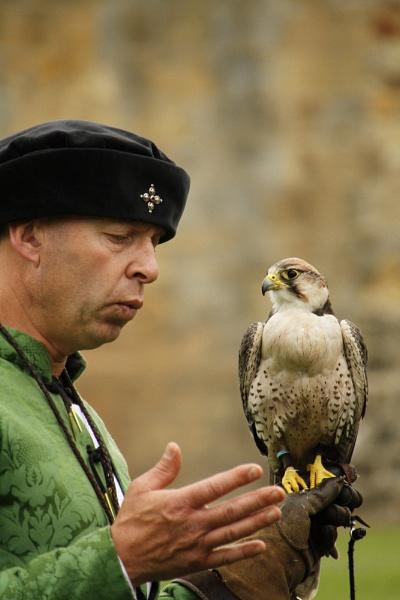 Bird in Hand by williamthorpe271