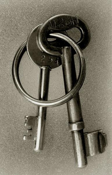 Locker Keys by Canonomic