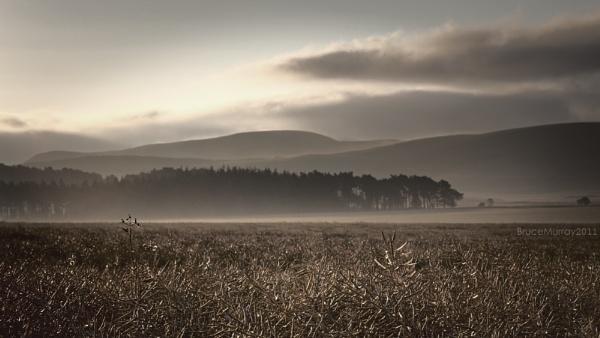 Pentland mist by Brewster