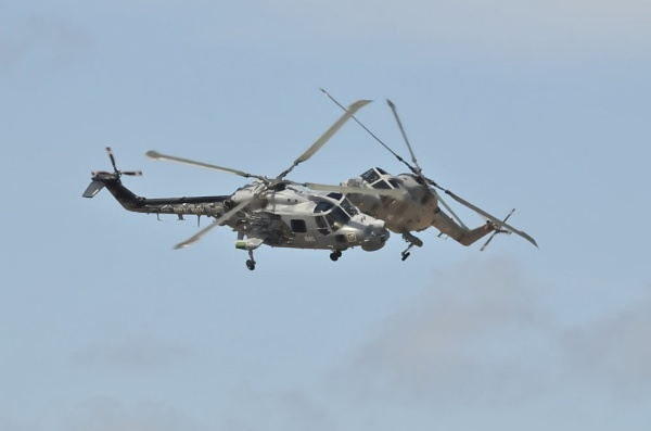 Lynx A Close Shave by Kruger01