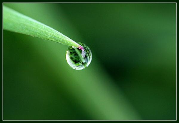 Waterdrop reflections by Heffo1