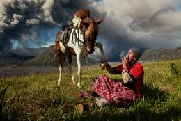 Mount Bromo's Horseman