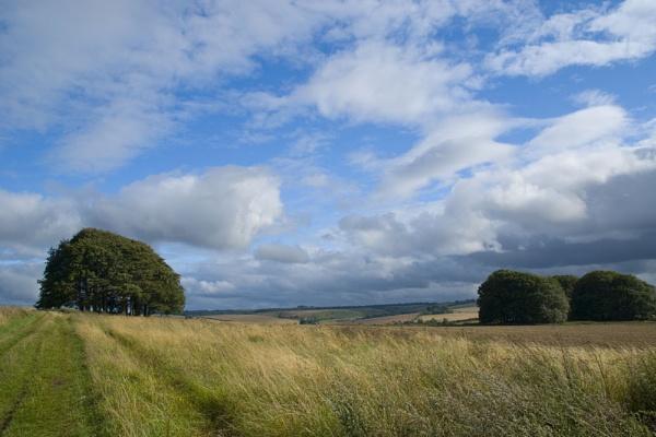 Ridgeway Path, Wiltshire by JanetKenyon