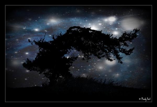 Starry Night by MHart
