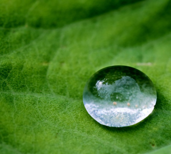 One Drop of Rain revistited by marktc
