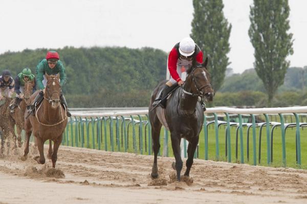 The Winner by williamthorpe271