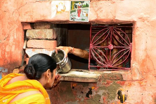 True social worker in the way of the Taj by kpramanik7