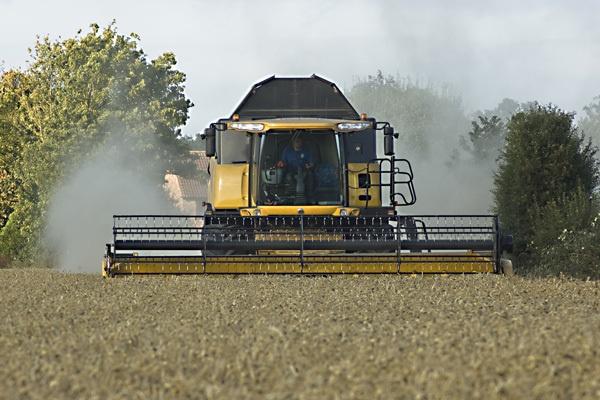 Harvest Time by Ianuk42