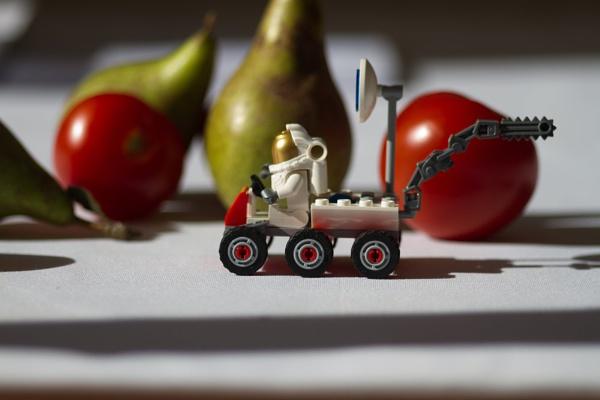 Houston, we have fruit,,, by mrpjspencer