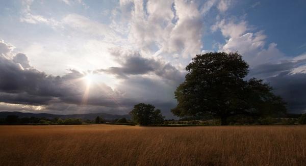 Malvern View by Kim Walton