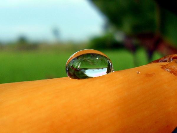 Liquid Crystal by sreejib77