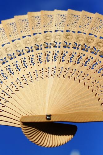 Portable Wood Fan by Dhafi