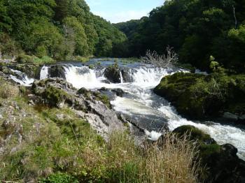 Cenarth falls near Cardigan, Wales.