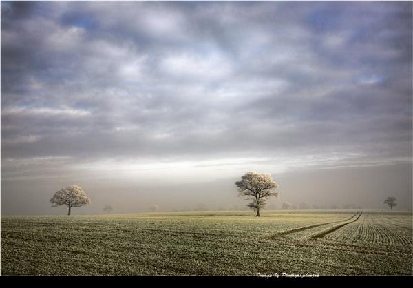 Frosty Morning by photographerjoe