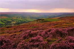 Farndale and the Moors from Blakey Ridge (2)