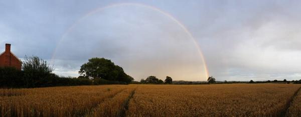 Cornfield Rainbow by SexyDan