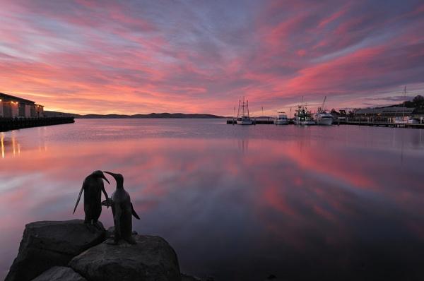 Dawn Watch by Walkthru