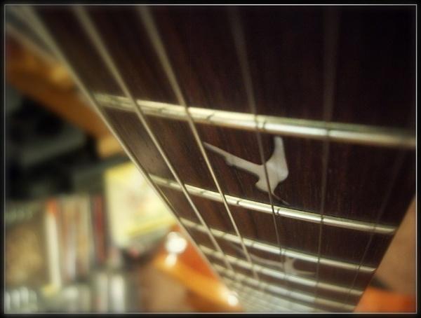 Strings! by maryatsix