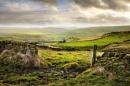 Gateway to the landscape