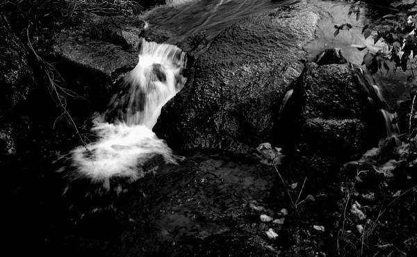 Small Fall. by bhavya