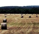 Grass Henges