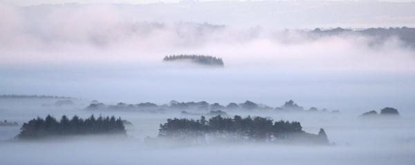 Misty morning by simonjr