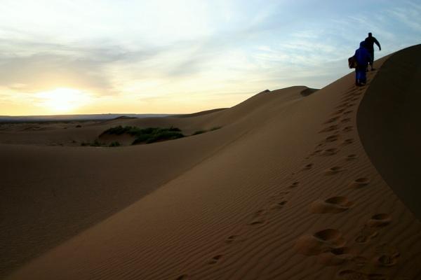 Saharan Sunrise by Netty